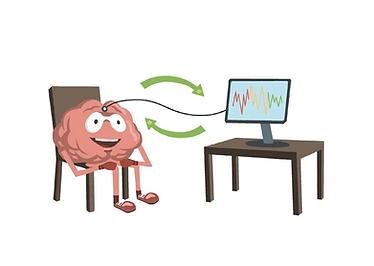 neurofeedback.webp