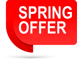 SPRING OFFER REFLECT.png