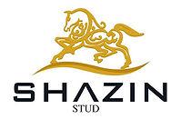 Logo-SHAZIN.jpg