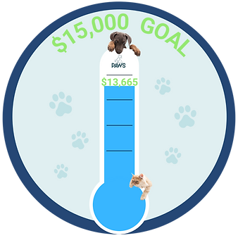 Fund-a-Cause Thermometer (5).png