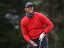 Tiger Woods is currently awake and responsive.