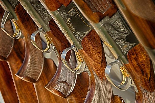 guns-467710_1920.jpg
