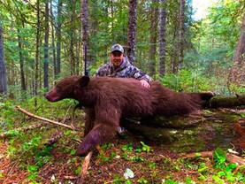 Bjørnejagt Idaho