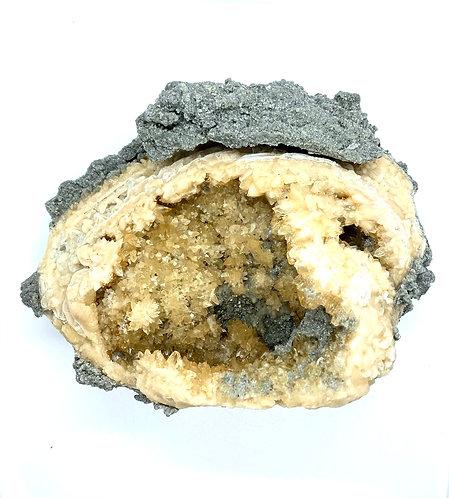 Calcite Bivalve