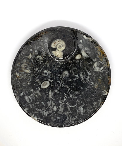 Marble Fossil Inlaid Circle Bowl
