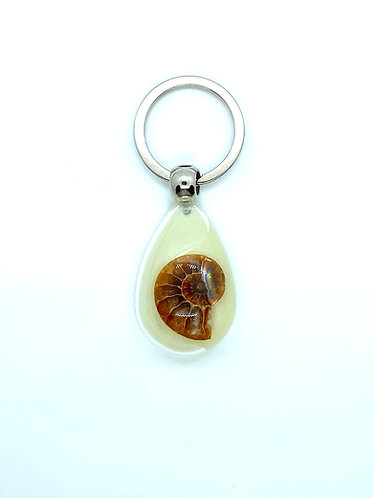 Cleoniceras Ammonite Keyring