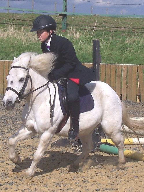 Loan a Pony Morning