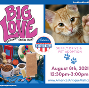 Big Love Supply Drive & Pet Adoption