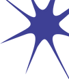 Prossol_Logo-020_edited_edited.png