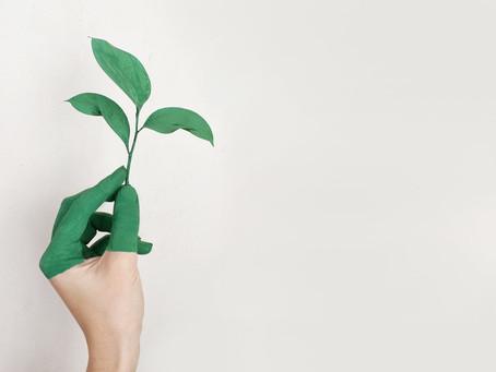 Conscientização – 12 Atitudes Sustentáveis para termos em casa