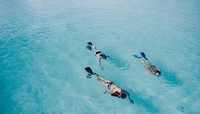 snorkelers in the ocean - snorkel gear from key west watersports store