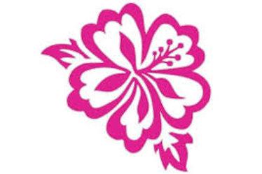 Hibiscus Decal