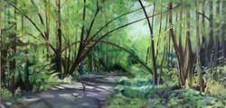 Cranberry Trail  *
