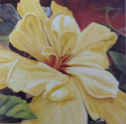 Yellow Hibiscus *