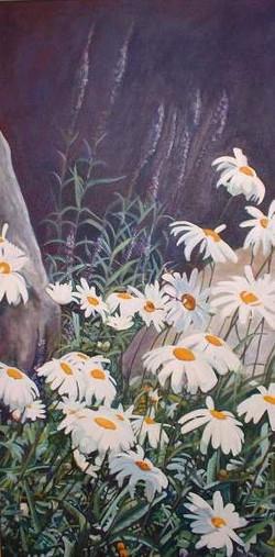 Sunlit Daisies*
