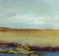 Wetlands 1*
