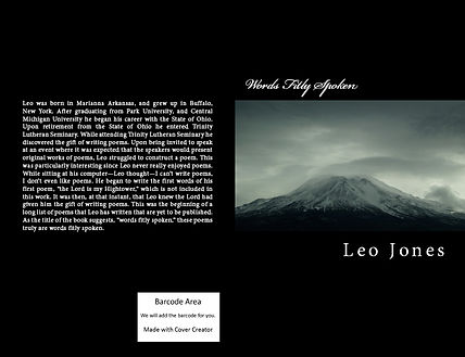 Book Cover Preview 1-28-15.jpg