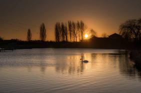 Willen Lake 21