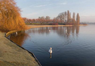 Willen Lake 8