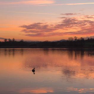 Willen Lake 3