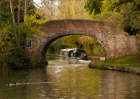 Grand Union Canal 50