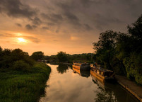 Grand Union Canal 15