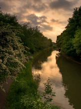 Grand Union Canal 44