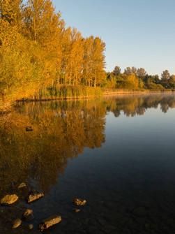 Willen Lake 34