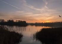 Willen Lake 55