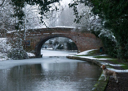 Grand Union Canal 24