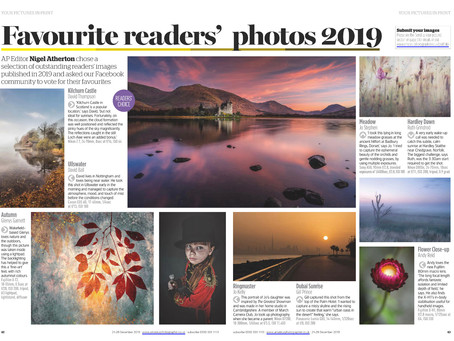 Editor's Choice 'Outstanding Image' of 2019