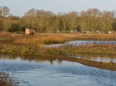 Floodplain Forest Nature Reserve, Old Wolverton 2