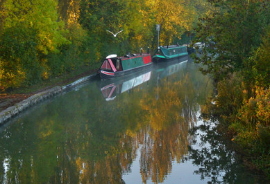 Grand Union Canal 6