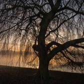 Willen Lake 7