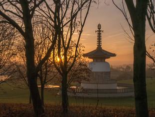 Peace Pagoda 14