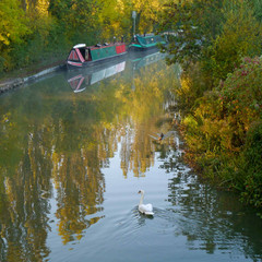 Grand Union Canal 32