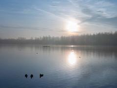 Willen Lake 10