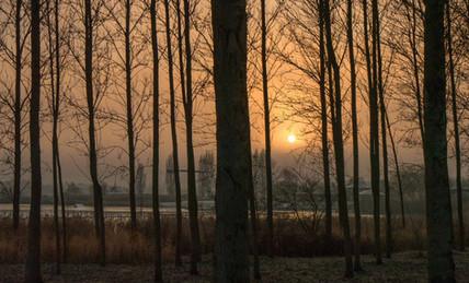 Willen Lake 44