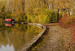 Grand Union Canal 4