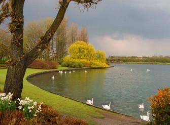 Willen Lake 4