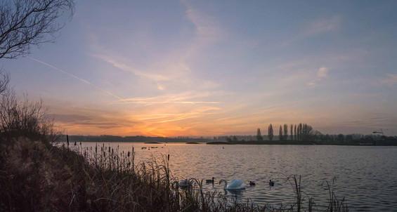 Willen Lake 52