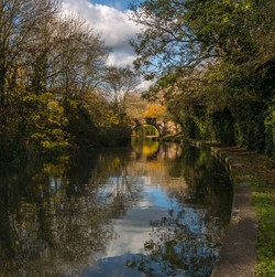 Grand Union Canal 17