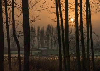 Willen Lake 45