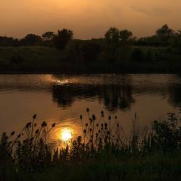 Caldecotte Lake 5