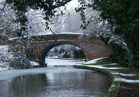 Grand Union Canal 23