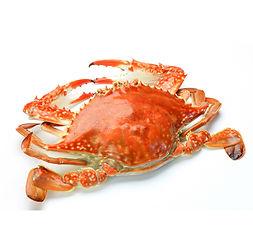 CHSABC Crabfeed