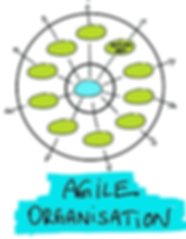Agile Organisation_edited.png