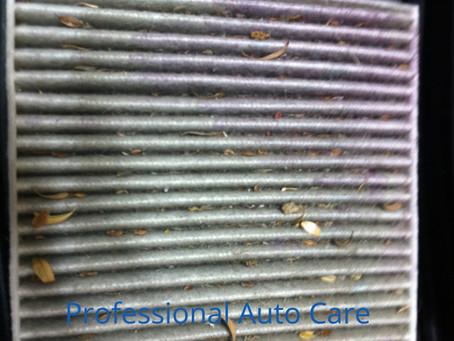 Cheap, Simple Maintenance: Cabin Air Filter