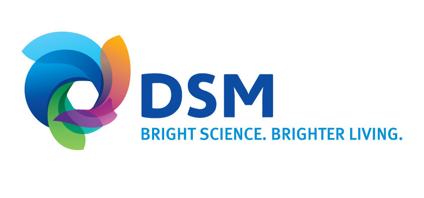 0 dsm-logo-jpg-version