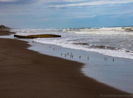 Ocean World Day